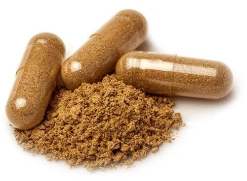 Buy Ibogaine Online – Natural Ibogaine For Sale Online – Magic Mushrooms Dispensary Near Meibogaine, ibogaine treatment, ibogaine for sale, ibogaine treatment centers, ibogaine buy, ibogaine reddit, ibogaine treatment cost